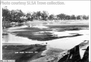 1914 Low river Waikerie